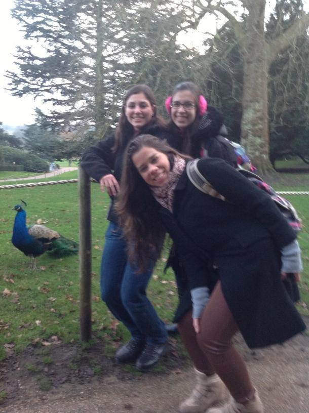 Ana Carolina, Paula e Deborah posando junto com o pavão no Warwick Castle.