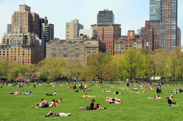 central-park-meadow-nyc.jpg