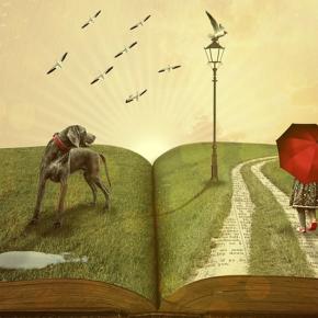 Livros sobre viagem que vão completar suabiblioteca